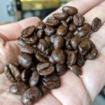 コーヒー豆が濡れている?